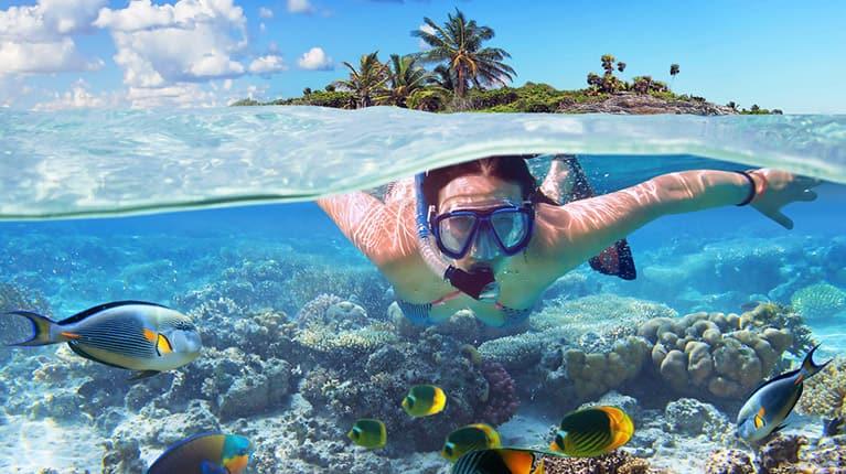mujer buceando descubre la caparazón de una concha marina