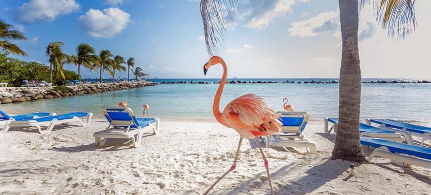 Caribe sur desde Miami, 9 días