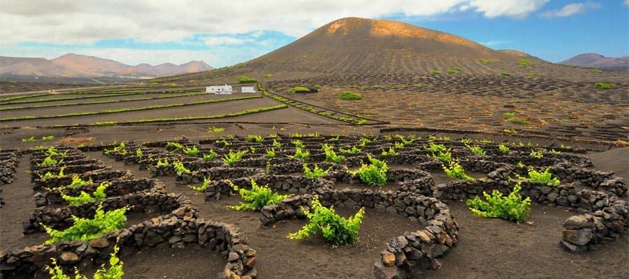 Región vinícola de La Geria en crucero por Europa