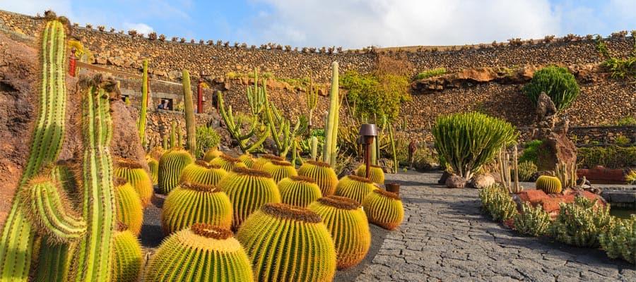 Jardín de cactus tropicales en Guatiza
