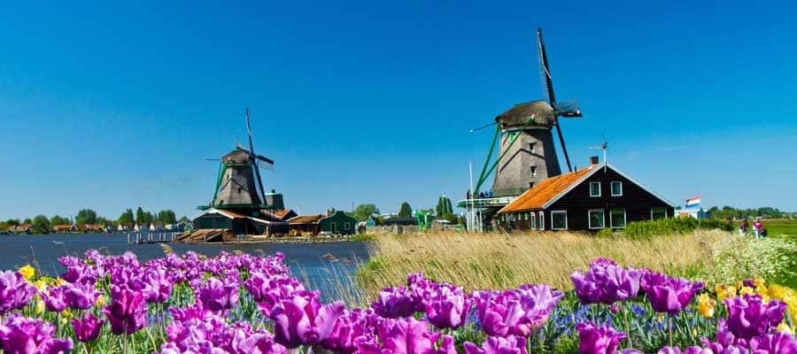 Molinos de viento de Ámsterdam