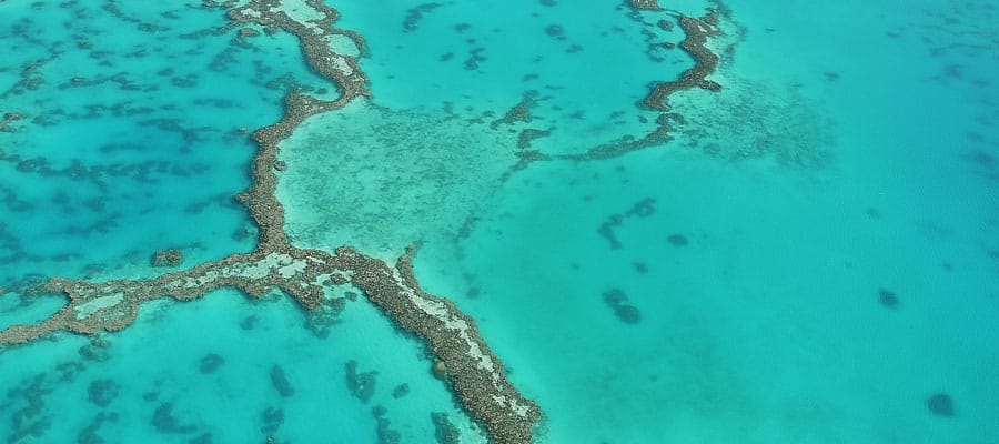 Gran Barrera de Coral en un crucero en Australia
