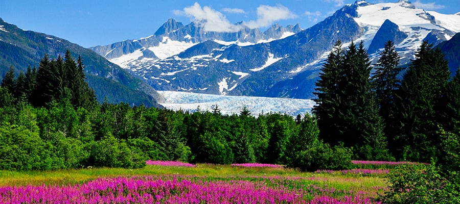 Visita el impresionante glaciar Mendenhall en un crucero por Alaska