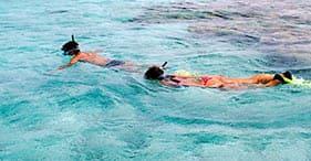 Buceo de superficie en St. Kitts