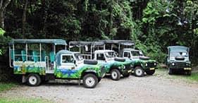 Safari en 4X4 por la isla y playa