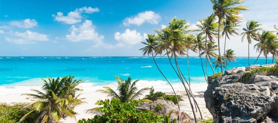 Crucero a Bottom Bay en Bridgetown, Barbados