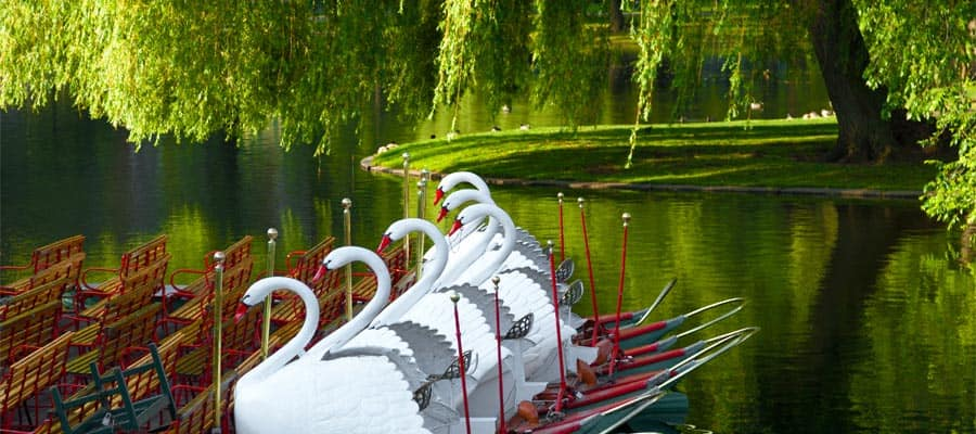 Jardín Público de Bostonen tu crucero a Boston