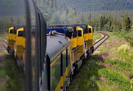 Explora Denali en tren, 12 días