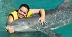 Nadar y pasear con delfines, todo incluido