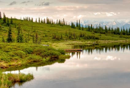 Expreso Denali y Fairbanks, 11 días