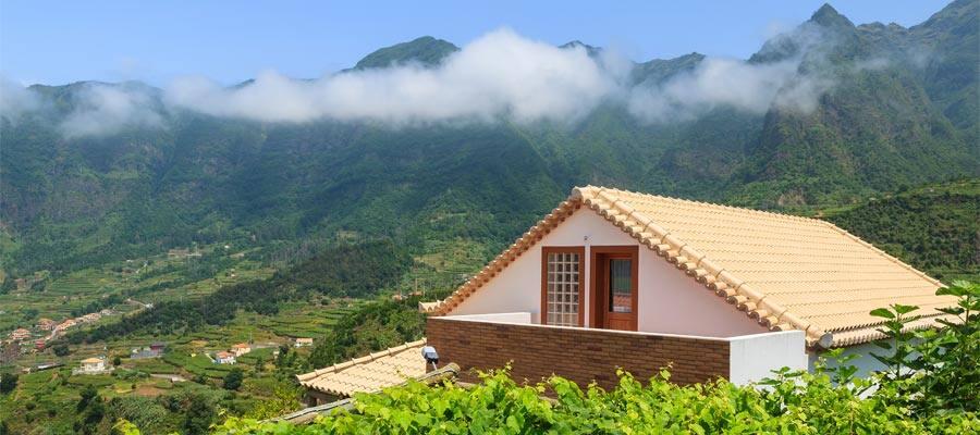 Viñedo en Madeira en tu crucero por Europa