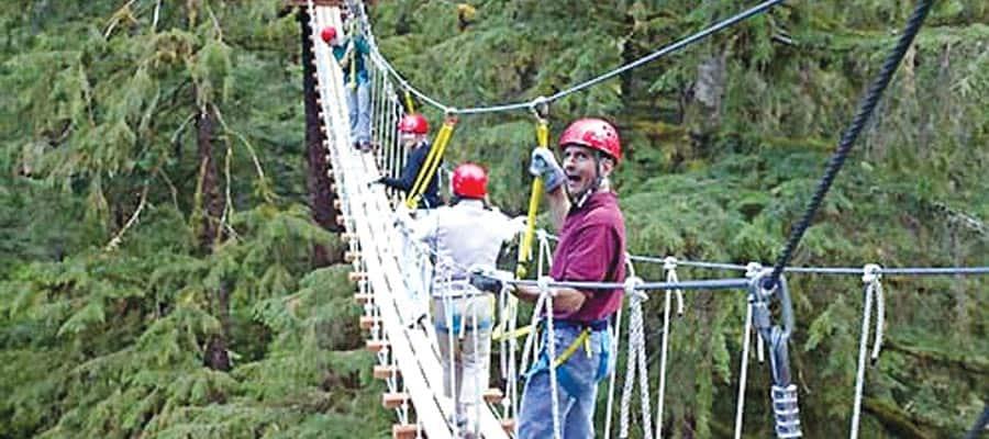 Tirolesa entre las copas de los árboles en un crucero por Alaska