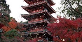 Templo y jardines hermosos