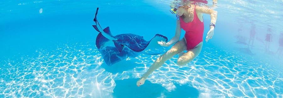 MI.Galería.Great Stirrup Cay8