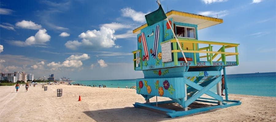 Coloridos mangrullos durante tu crucero por Miami