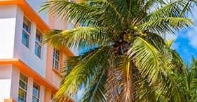Miami a tu aire - Termina en el aeropuerto de Ft. Lauderdale