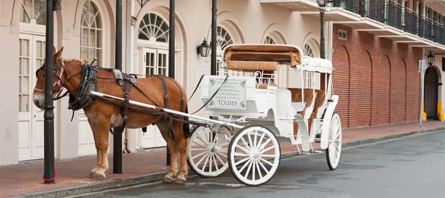 Pasea en un carruaje tirado por caballos en tu crucero en Nueva Orleans