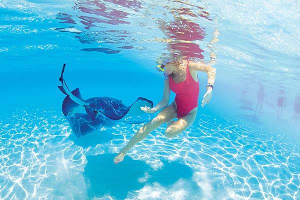 5 aventuras en el Caribe para los amantes de la adrenalina