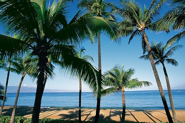 Visita el Centro Cultural Polinesio en tu crucero en Hawái