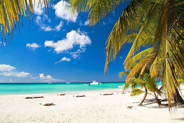 Recorre las islas: 6 actividades en la Isla Gran Bahama