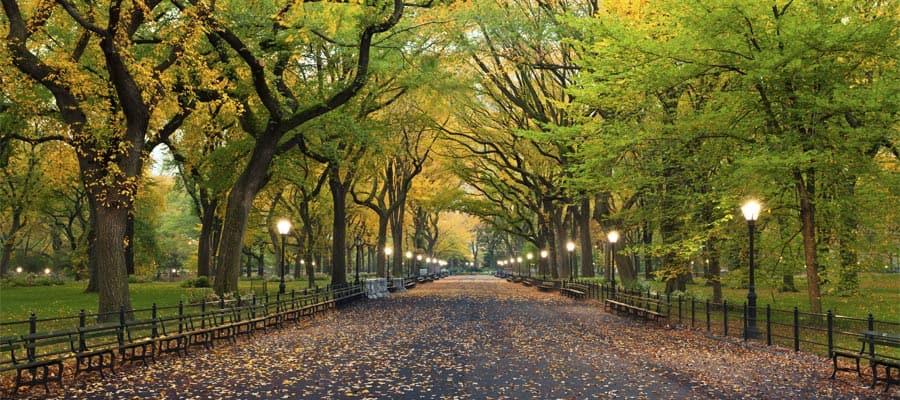 Crucero a Nueva York y paseo por Central Park