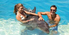 Encuentro con delfines.
