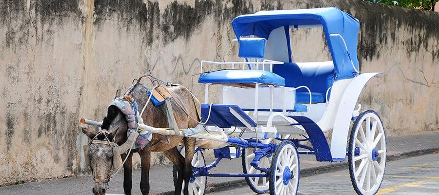 Carruaje tradicional tirado por caballos en un crucero a Santo Domingo