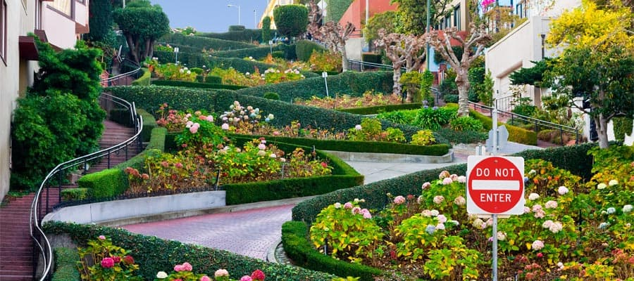 Viaja en crucero a San Francisco y visita Lombard Street
