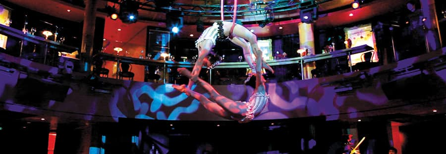 Cirque Dinner & Dreams