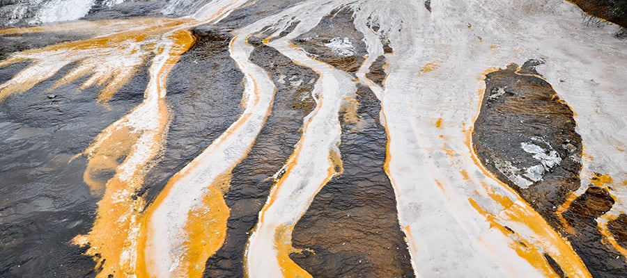 Parque geotermal Orako Korakei en cruceros a Tauranga