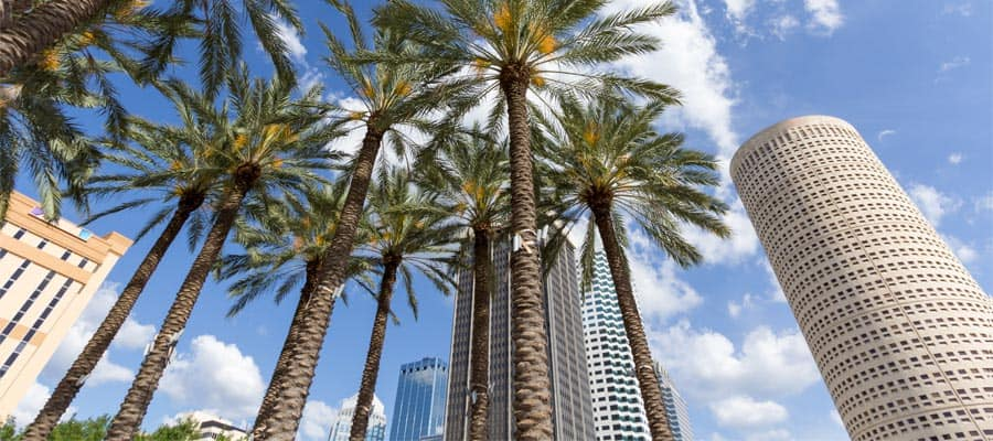 Visita el centro de Tampa en tu crucero