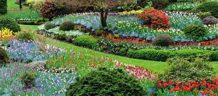 Los hermosos Jardines Butchart en tu crucero a Victoria
