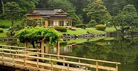 Lo más destacado de Tokio con traslado al hotel