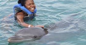 Encuentro con delfines y banco de arena con rayas