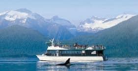 Glaciar Mendenhall y avistamiento de ballenas