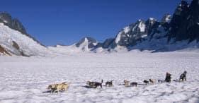 Paseo en trineo tirado por perros y vista del glaciar en helicóptero