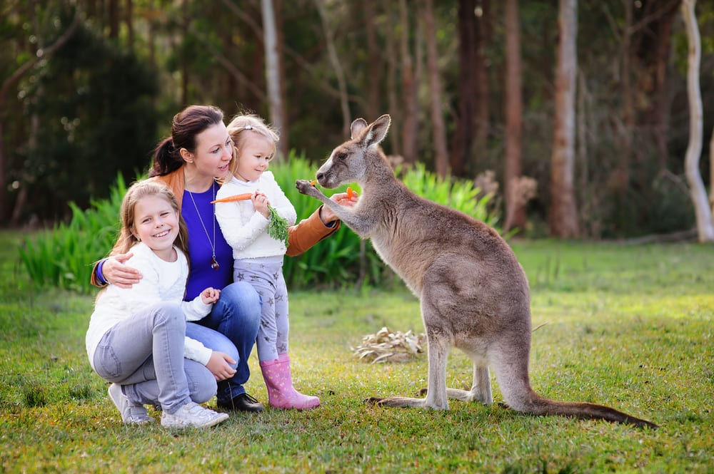 Experience Life in the Outback on an Australia Cruise with Norwegian